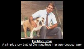 bulldog love.jpg?1364402009815